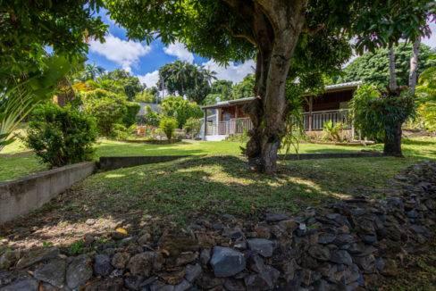 Maison F5 au cœur d'un jardin remarquable de 1 040 m²