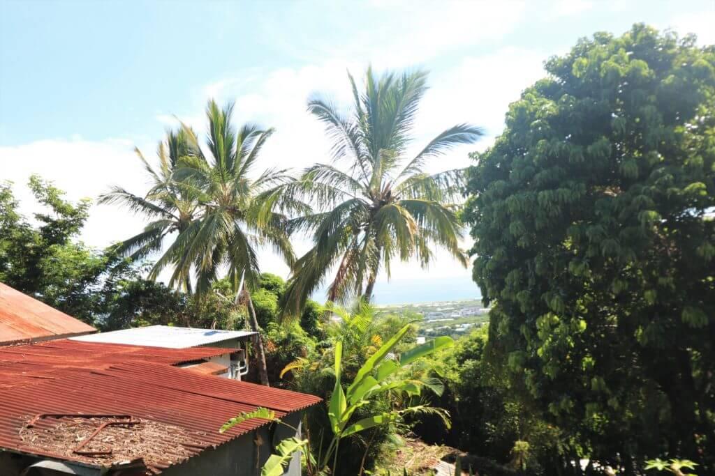 Terrain - Sainte Clotilde - Bois de Nèfles Ile de la Réunion - Kbernardi Immo